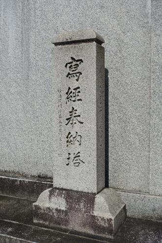 DSC01024.jpg