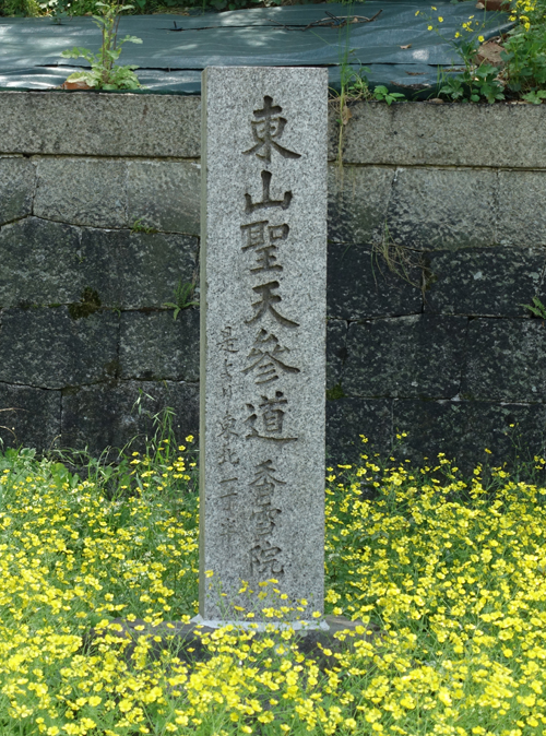 DSC01236.JPG