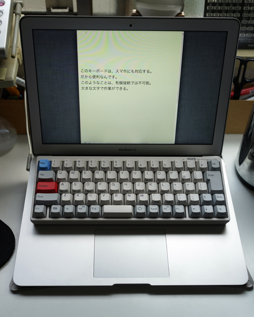 DSC02371.jpg